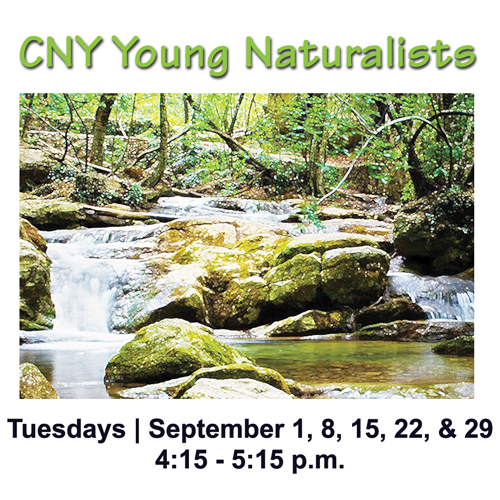 CNY Young Naturalists image